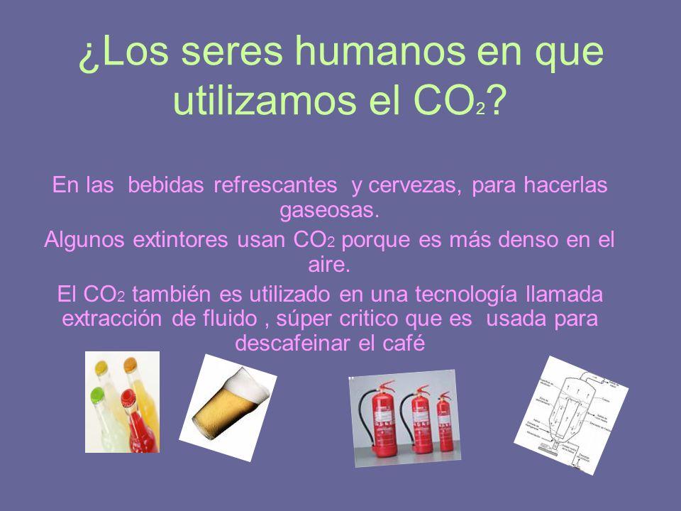 ¿Los seres humanos en que utilizamos el CO 2 ? En las bebidas refrescantes y cervezas, para hacerlas gaseosas. Algunos extintores usan CO 2 porque es