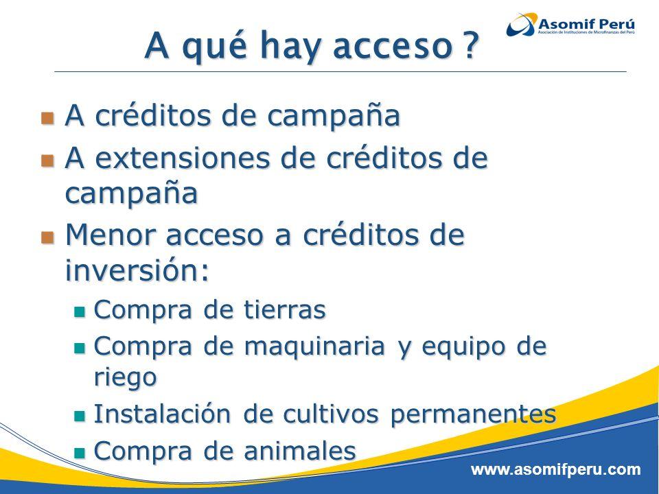 www.asomifperu.com A qué hay acceso ? A créditos de campaña A créditos de campaña A extensiones de créditos de campaña A extensiones de créditos de ca