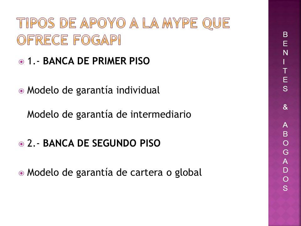 1.- BANCA DE PRIMER PISO Modelo de garantía individual Modelo de garantía de intermediario 2.- BANCA DE SEGUNDO PISO Modelo de garantía de cartera o g