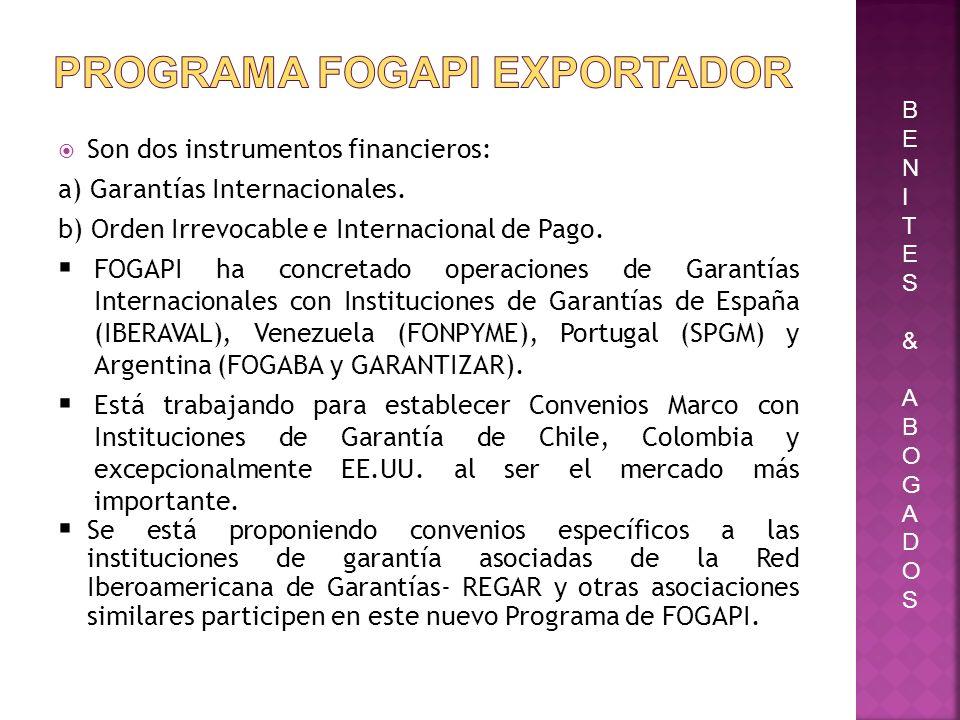 Son dos instrumentos financieros: a) Garantías Internacionales. b) Orden Irrevocable e Internacional de Pago. FOGAPI ha concretado operaciones de Gara