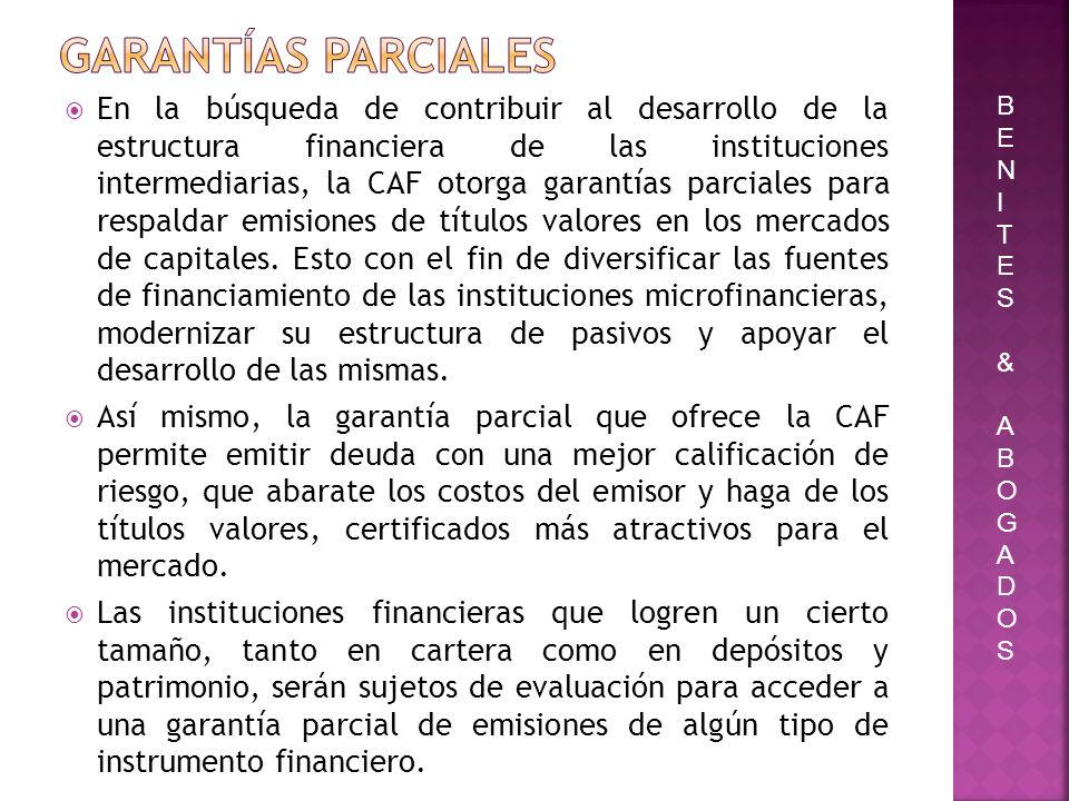 En la búsqueda de contribuir al desarrollo de la estructura financiera de las instituciones intermediarias, la CAF otorga garantías parciales para res