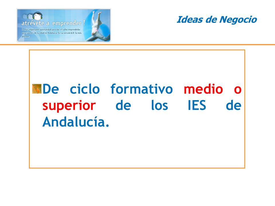 Ideas de Negocio De ciclo formativo medio o superior de los IES de Andalucía.