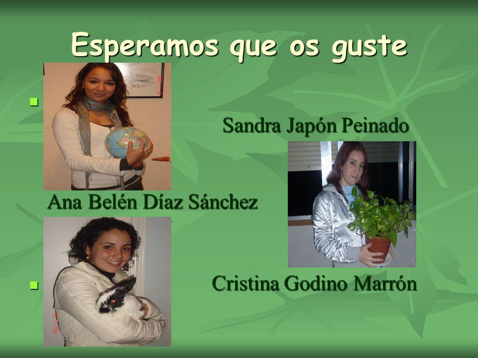 Esperamos que os guste Sandra Japón Peinado Ana Belén Díaz Sánchez Sandra Japón Peinado Ana Belén Díaz Sánchez Cristina Godino Marrón Cristina Godino Marrón