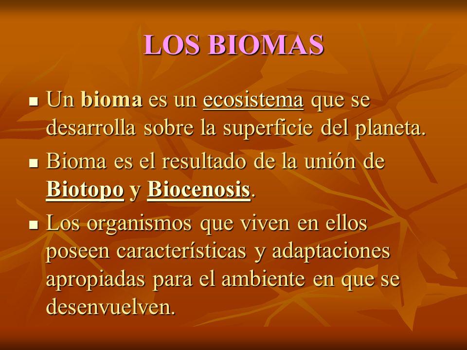 LOS BIOMAS Un bioma es un ecosistema que se desarrolla sobre la superficie del planeta.