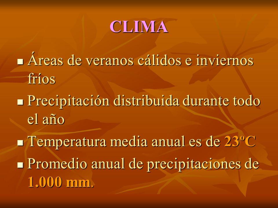 CLIMA Áreas de veranos cálidos e inviernos fríos Áreas de veranos cálidos e inviernos fríos Precipitación distribuida durante todo el año Precipitación distribuida durante todo el año Temperatura media anual es de 23ºC Temperatura media anual es de 23ºC Promedio anual de precipitaciones de 1.000 mm.