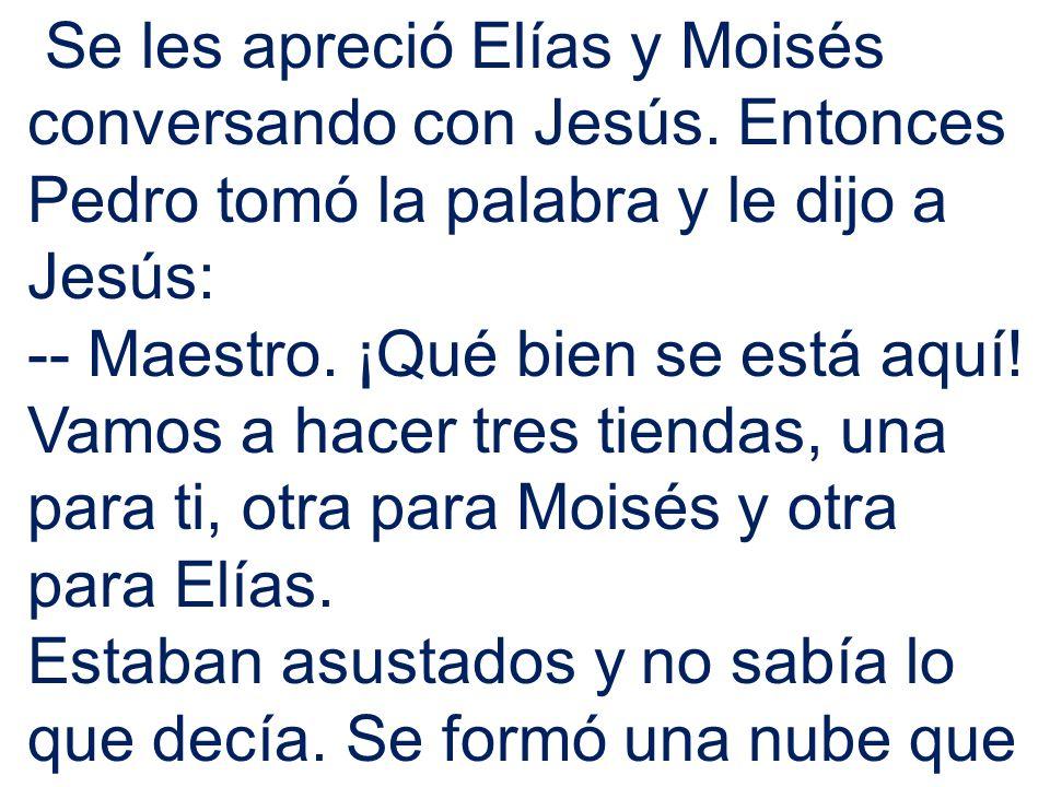Se les apreció Elías y Moisés conversando con Jesús. Entonces Pedro tomó la palabra y le dijo a Jesús: -- Maestro. ¡Qué bien se está aquí! Vamos a hac