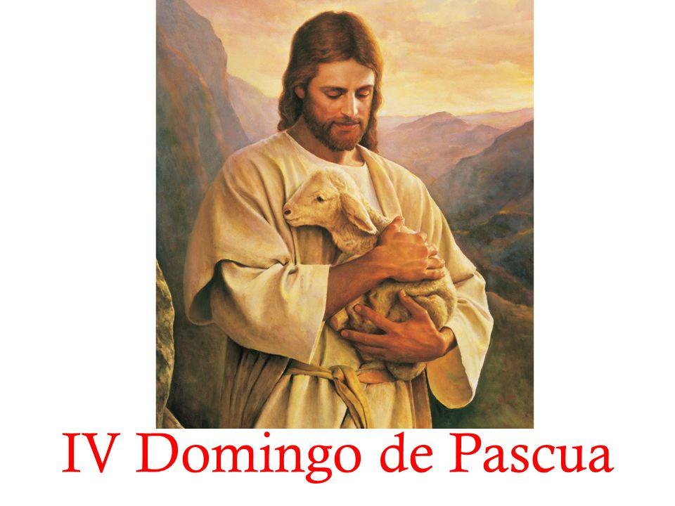 En el nombre del Padre, y del Hijo, y del Espíritu Santo.