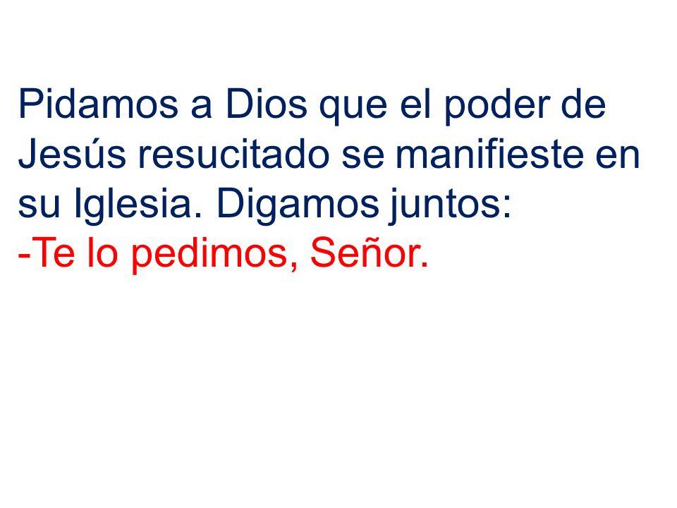 Pidamos a Dios que el poder de Jesús resucitado se manifieste en su Iglesia. Digamos juntos: -Te lo pedimos, Señor.