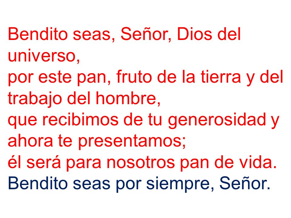 Bendito seas, Señor, Dios del universo, por este vino, fruto de la vid y del trabajo del hombre, que recibimos de tu generosidad y ahora te presentamos; él será para nosotros bebida de salvación.