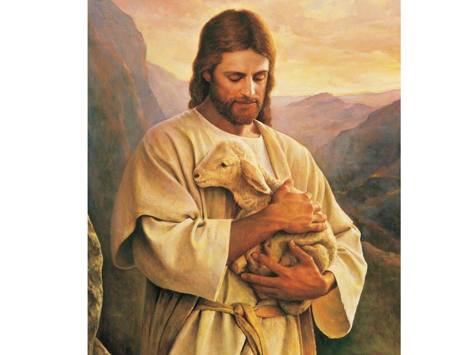 ORACIÓN Pastor bueno, vela con solicitud sobre nosotros y haz que el rebaño adquirido por la sangre de tu Hijo pueda gozar eternamente por las verdes praderas de tu reino.