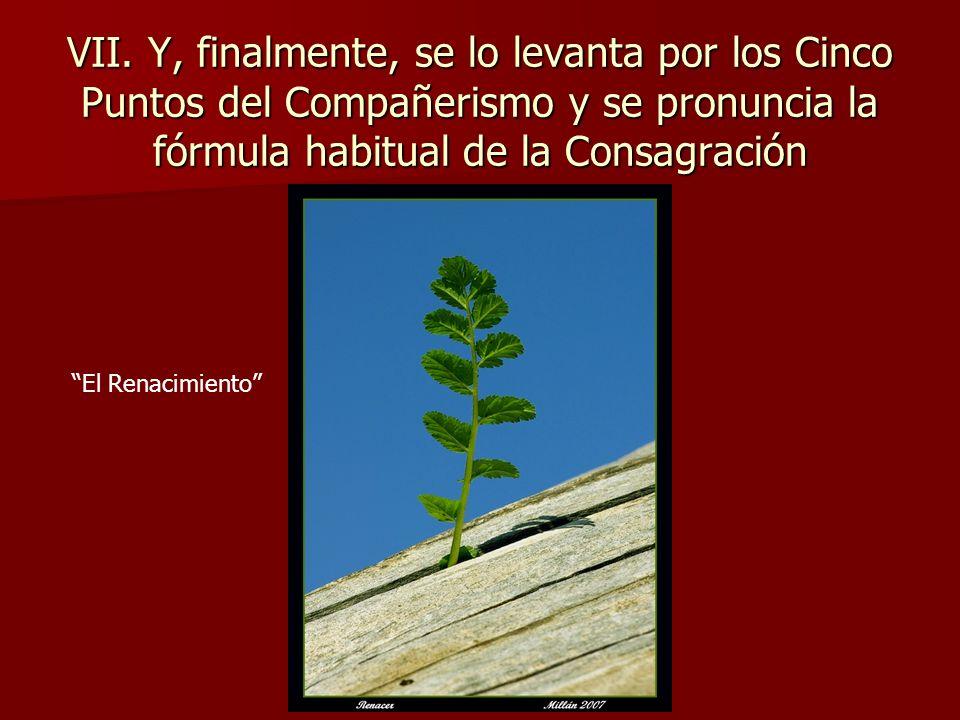 VII. Y, finalmente, se lo levanta por los Cinco Puntos del Compañerismo y se pronuncia la fórmula habitual de la Consagración El Renacimiento