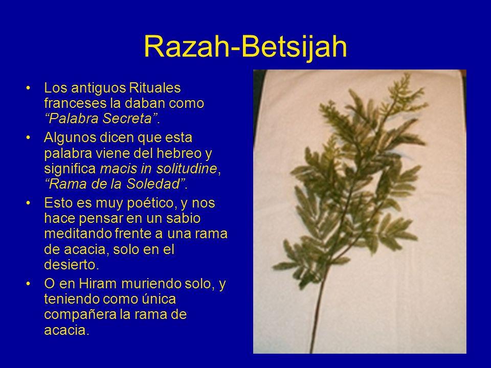 Razah-Betsijah Los antiguos Rituales franceses la daban como Palabra Secreta. Algunos dicen que esta palabra viene del hebreo y significa macis in sol