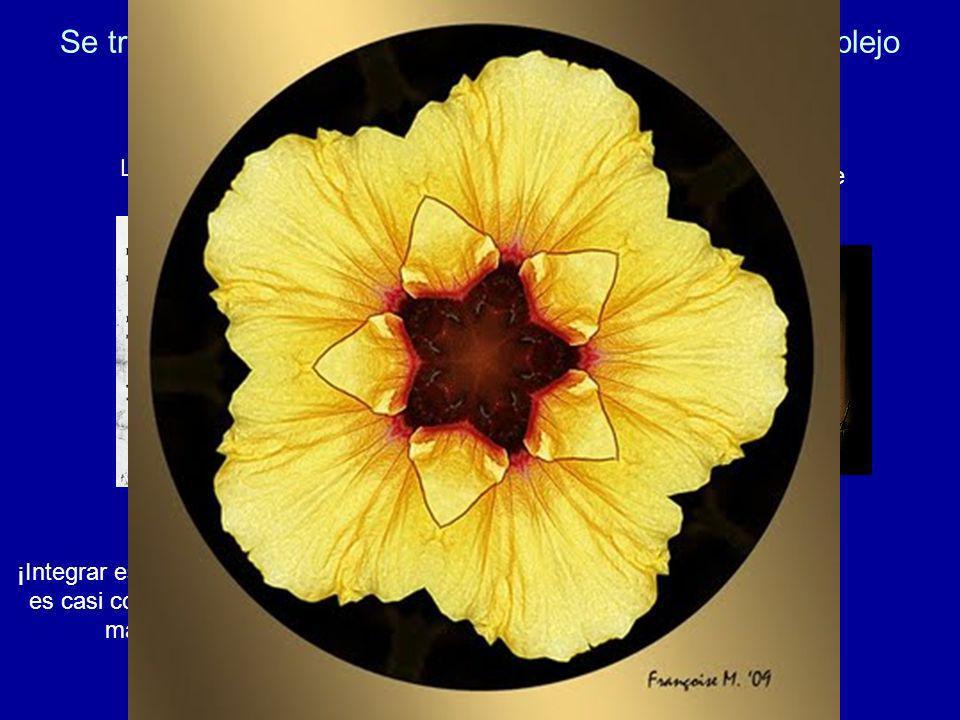 Se trata, por lo tanto, de un grado cuádruple, muy complejo pero a la vez enormemente rico La Enciclopedia La filosofía griega La tradición de Adonhir