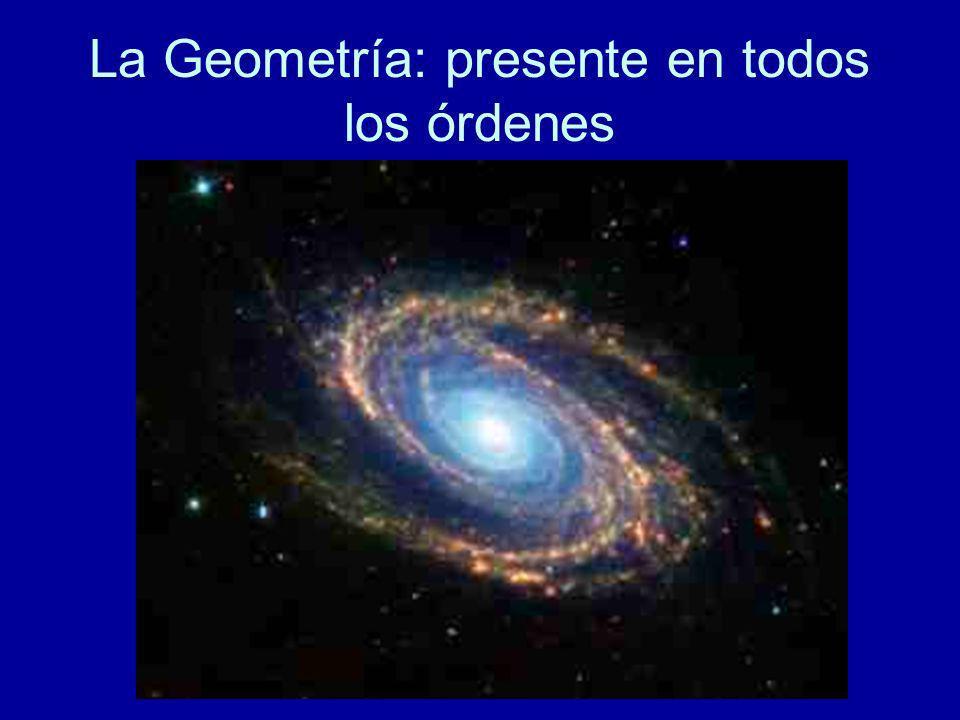 La Geometría: presente en todos los órdenes