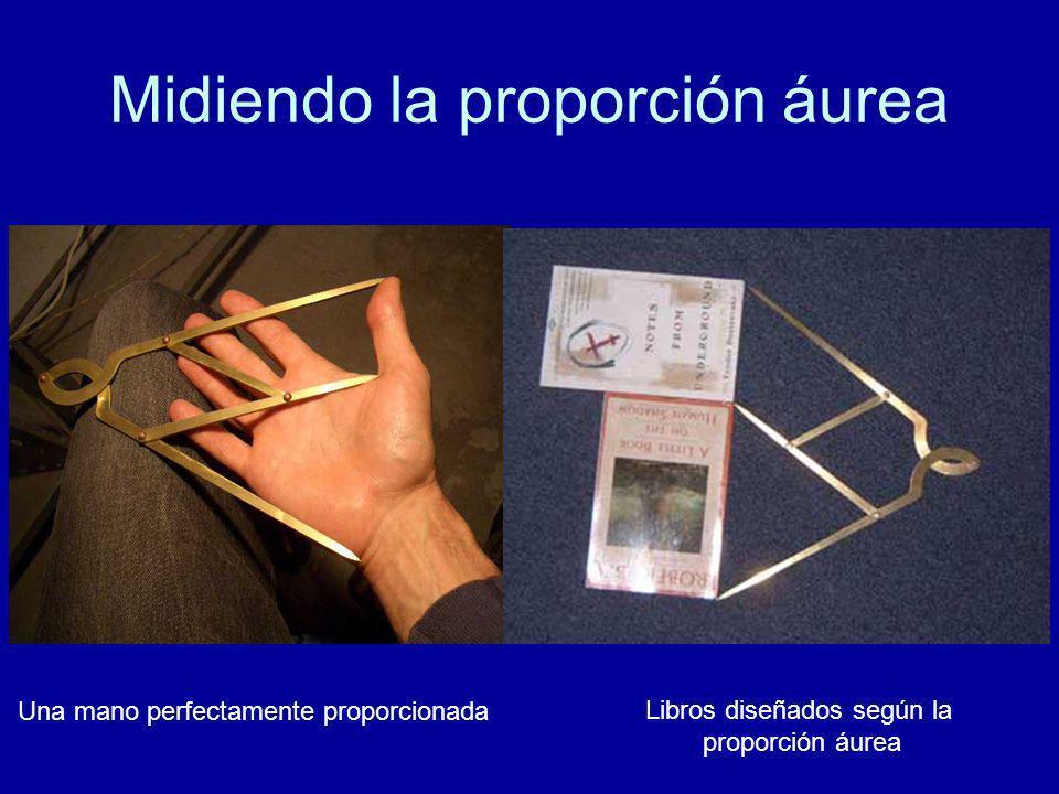 Midiendo la proporción áurea Una mano perfectamente proporcionada Libros diseñados según la proporción áurea