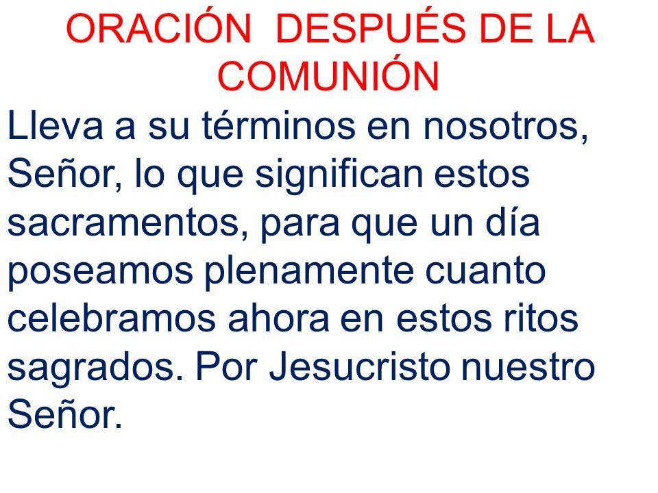ORACIÓN DESPUÉS DE LA COMUNIÓN Lleva a su términos en nosotros, Señor, lo que significan estos sacramentos, para que un día poseamos plenamente cuanto