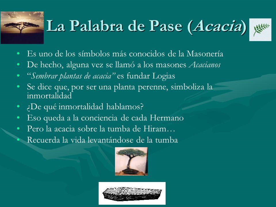 La Palabra de Pase (Acacia) La Palabra de Pase (Acacia) Es uno de los símbolos más conocidos de la Masonería De hecho, alguna vez se llamó a los mason