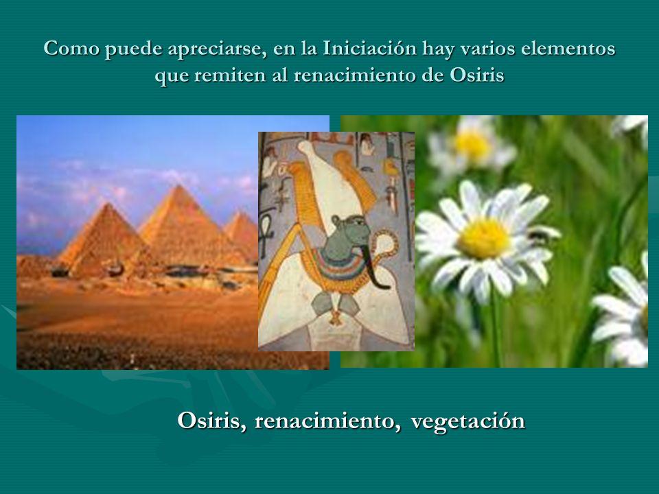 Como puede apreciarse, en la Iniciación hay varios elementos que remiten al renacimiento de Osiris Osiris, renacimiento, vegetación