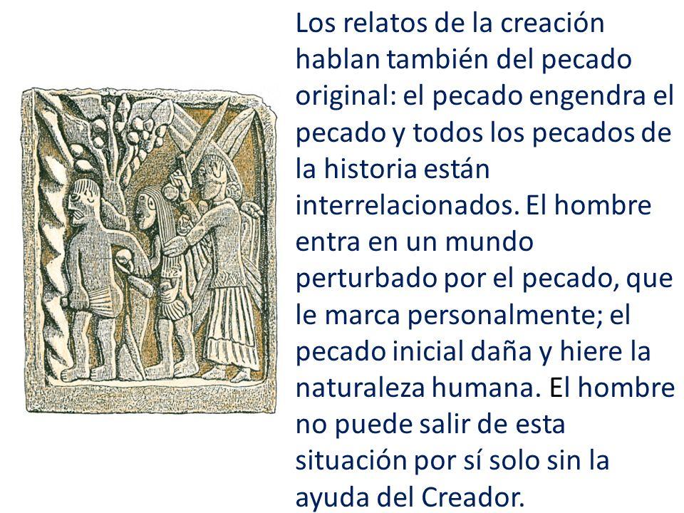 Los relatos de la creación hablan también del pecado original: el pecado engendra el pecado y todos los pecados de la historia están interrelacionados.