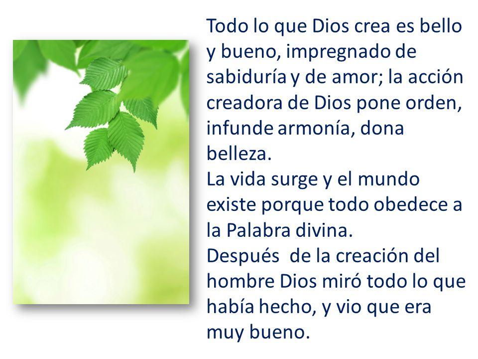 Todo lo que Dios crea es bello y bueno, impregnado de sabiduría y de amor; la acción creadora de Dios pone orden, infunde armonía, dona belleza.