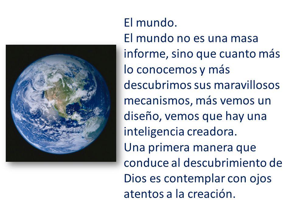 El mundo.