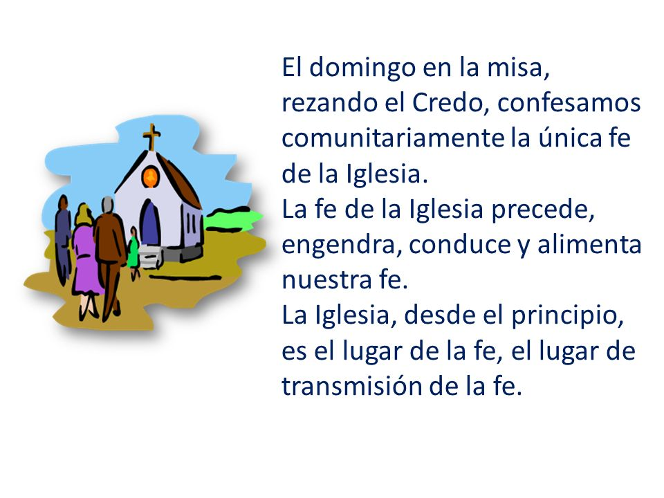 El domingo en la misa, rezando el Credo, confesamos comunitariamente la única fe de la Iglesia.