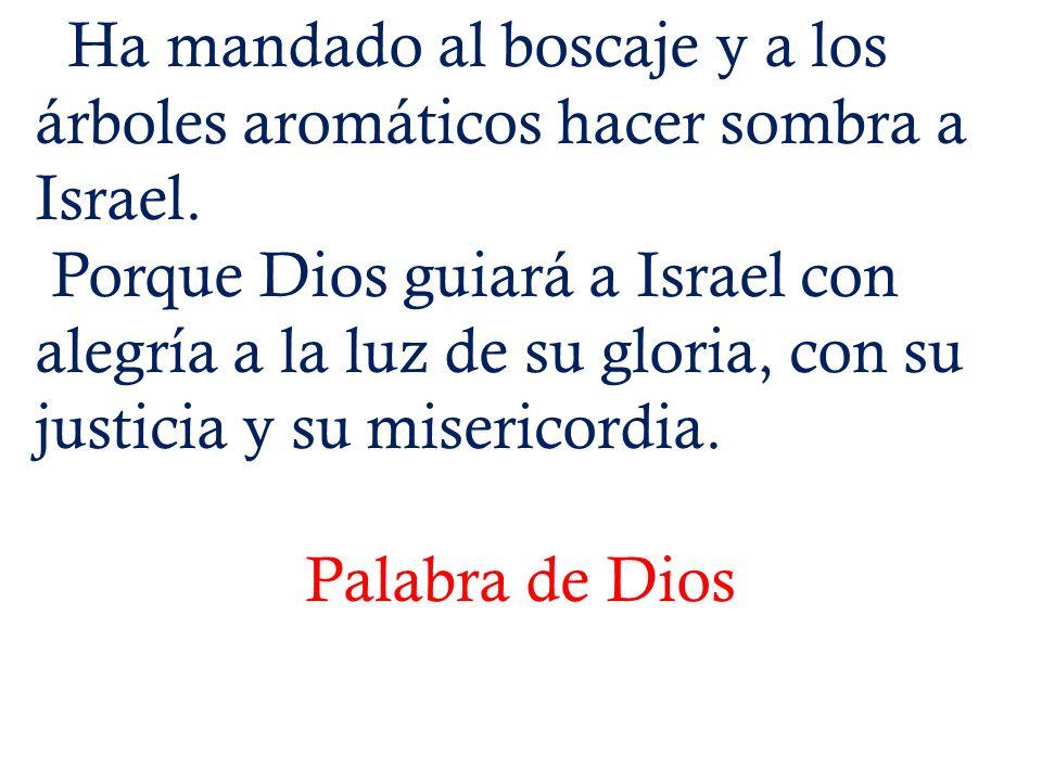 Ha mandado al boscaje y a los árboles aromáticos hacer sombra a Israel. Porque Dios guiará a Israel con alegría a la luz de su gloria, con su justicia