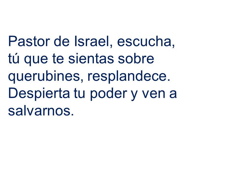 Pastor de Israel, escucha, tú que te sientas sobre querubines, resplandece.