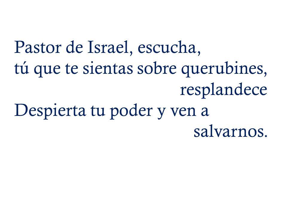 Pastor de Israel, escucha, tú que te sientas sobre querubines, resplandece Despierta tu poder y ven a salvarnos.