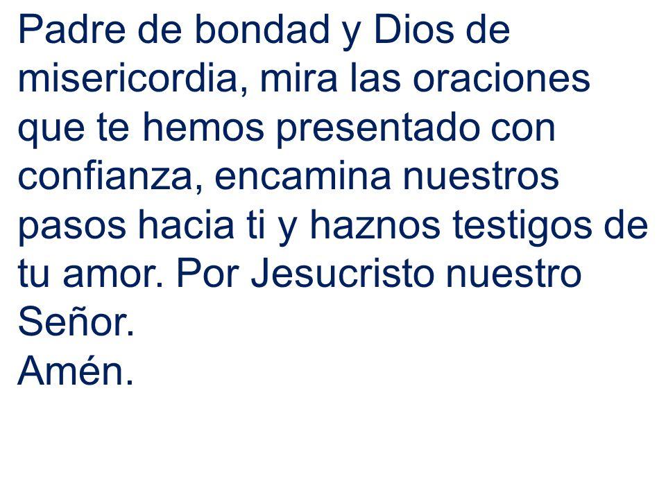 Padre de bondad y Dios de misericordia, mira las oraciones que te hemos presentado con confianza, encamina nuestros pasos hacia ti y haznos testigos d