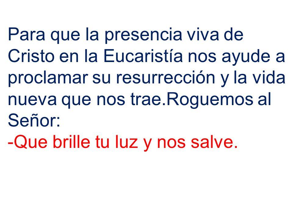 Para que la presencia viva de Cristo en la Eucaristía nos ayude a proclamar su resurrección y la vida nueva que nos trae.Roguemos al Señor: -Que brill