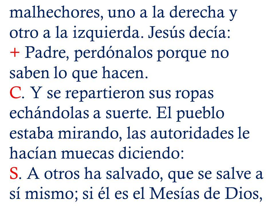 malhechores, uno a la derecha y otro a la izquierda. Jesús decía: + Padre, perdónalos porque no saben lo que hacen. C. Y se repartieron sus ropas echá