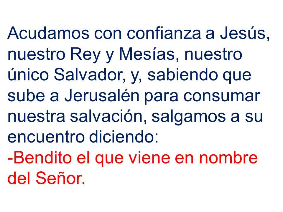 Acudamos con confianza a Jesús, nuestro Rey y Mesías, nuestro único Salvador, y, sabiendo que sube a Jerusalén para consumar nuestra salvación, salgam