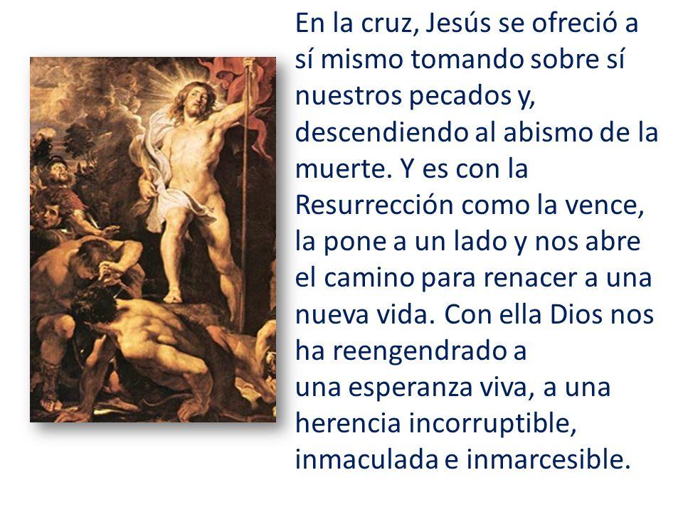 En la cruz, Jesús se ofreció a sí mismo tomando sobre sí nuestros pecados y, descendiendo al abismo de la muerte. Y es con la Resurrección como la ven