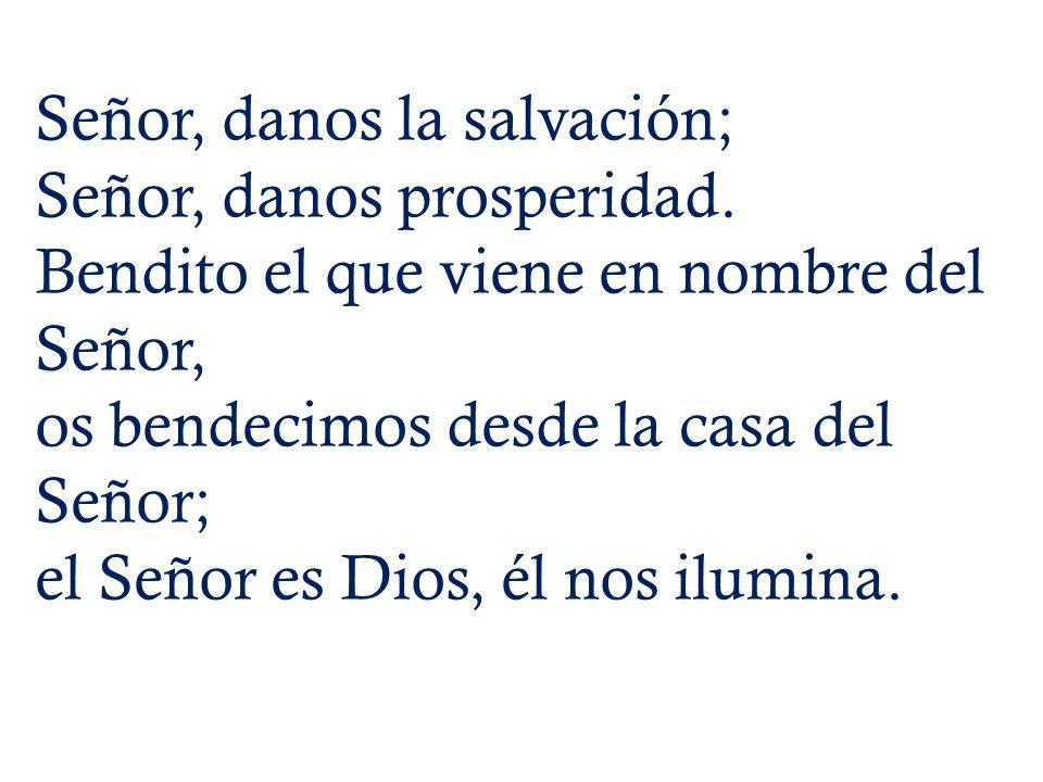 Señor, danos la salvación; Señor, danos prosperidad. Bendito el que viene en nombre del Señor, os bendecimos desde la casa del Señor; el Señor es Dios