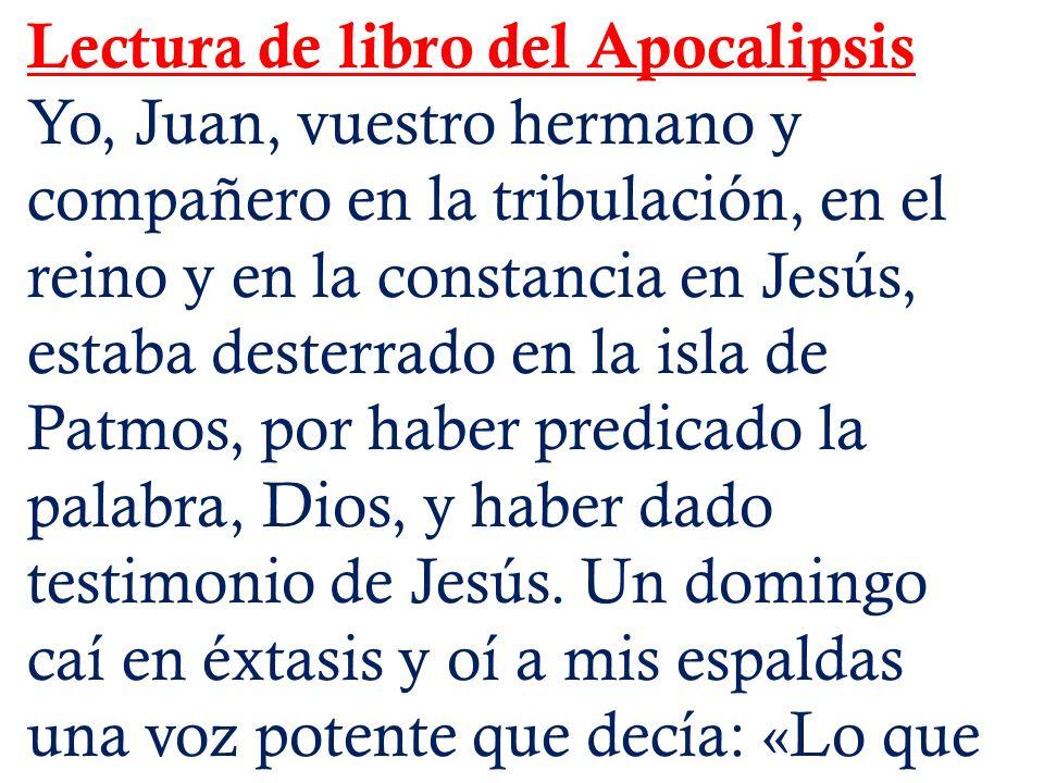 Lectura de libro del Apocalipsis Yo, Juan, vuestro hermano y compañero en la tribulación, en el reino y en la constancia en Jesús, estaba desterrado e