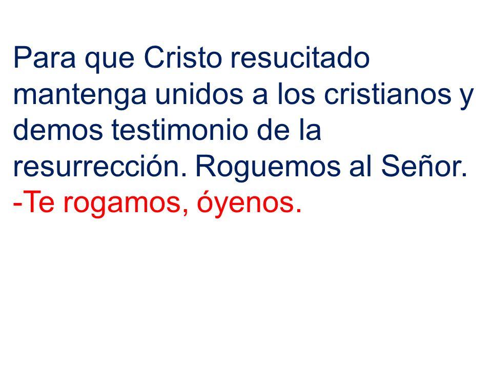Para que Cristo resucitado mantenga unidos a los cristianos y demos testimonio de la resurrección. Roguemos al Señor. -Te rogamos, óyenos.