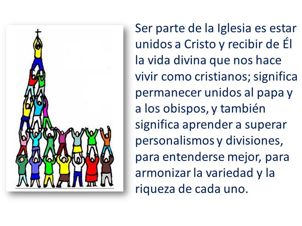 Ser parte de la Iglesia es estar unidos a Cristo y recibir de Él la vida divina que nos hace vivir como cristianos; significa permanecer unidos al pap