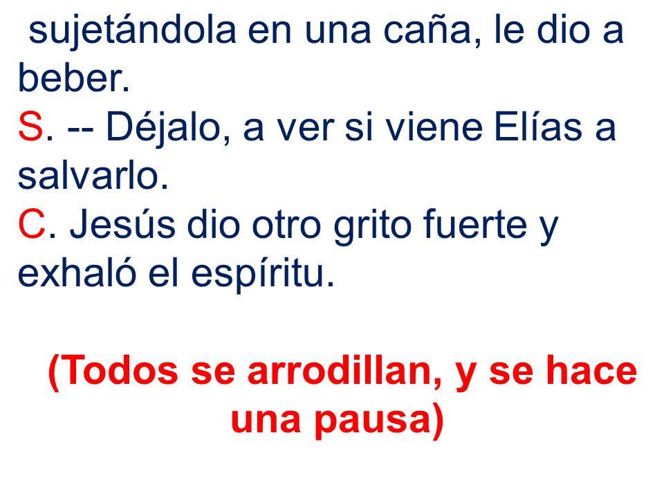 sujetándola en una caña, le dio a beber. S. -- Déjalo, a ver si viene Elías a salvarlo. C. Jesús dio otro grito fuerte y exhaló el espíritu. (Todos se