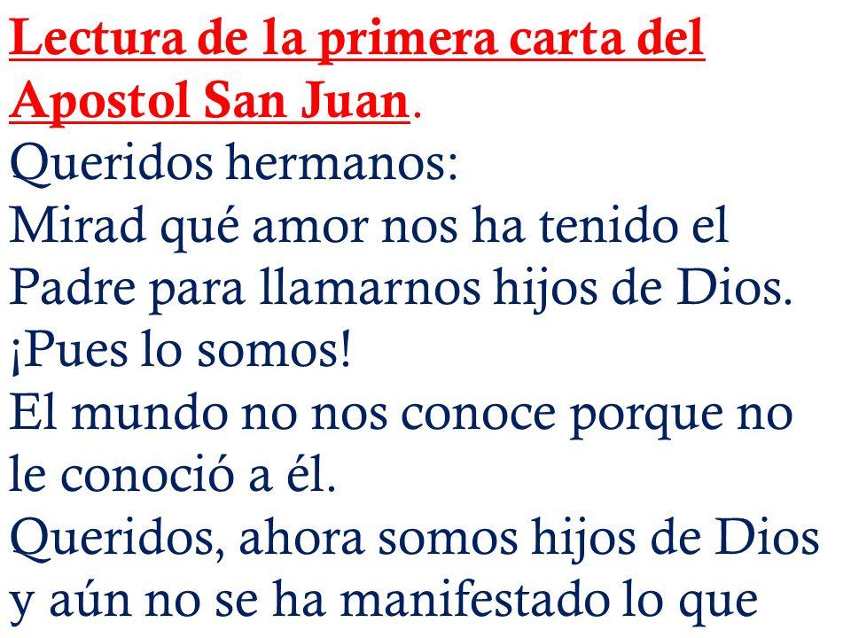 Lectura de la primera carta del Apostol San Juan. Queridos hermanos: Mirad qué amor nos ha tenido el Padre para llamarnos hijos de Dios. ¡Pues lo somo