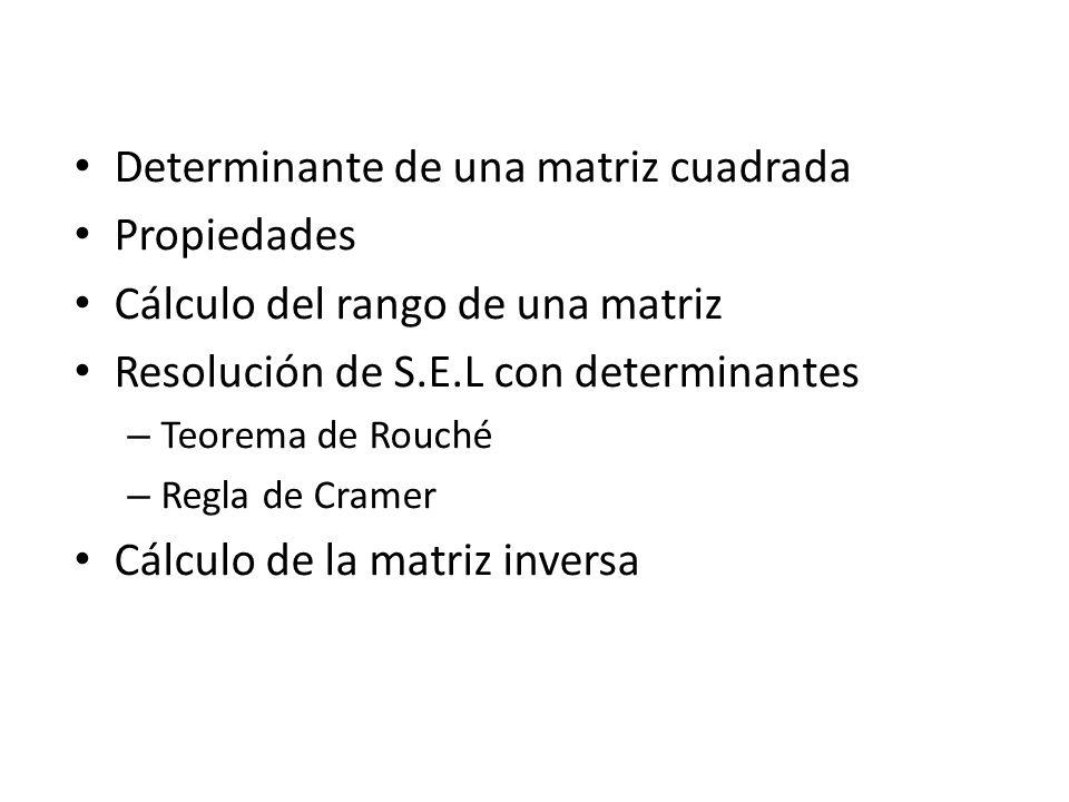 Determinante de una matriz cuadrada Propiedades Cálculo del rango de una matriz Resolución de S.E.L con determinantes – Teorema de Rouché – Regla de C