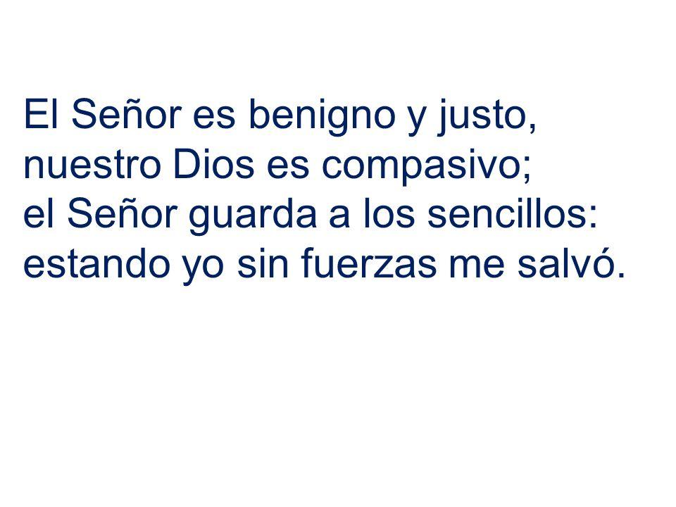 El Señor es benigno y justo, nuestro Dios es compasivo; el Señor guarda a los sencillos: estando yo sin fuerzas me salvó.