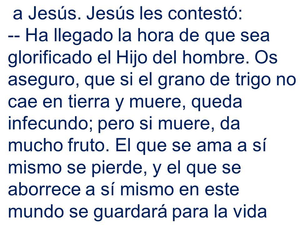 a Jesús. Jesús les contestó: -- Ha llegado la hora de que sea glorificado el Hijo del hombre. Os aseguro, que si el grano de trigo no cae en tierra y