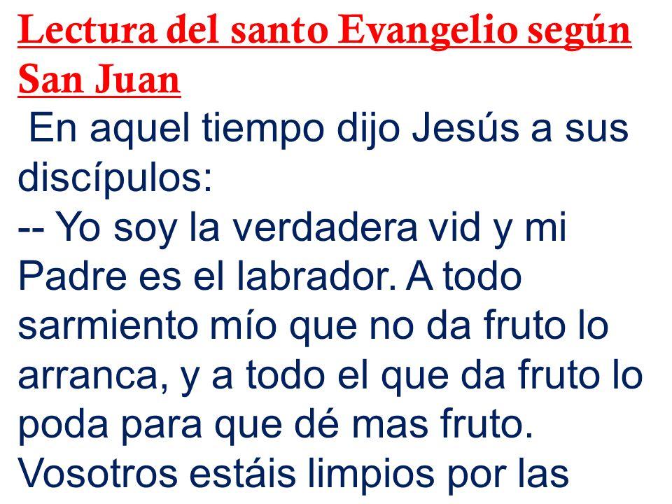 Lectura del santo Evangelio según San Juan En aquel tiempo dijo Jesús a sus discípulos: -- Yo soy la verdadera vid y mi Padre es el labrador. A todo s