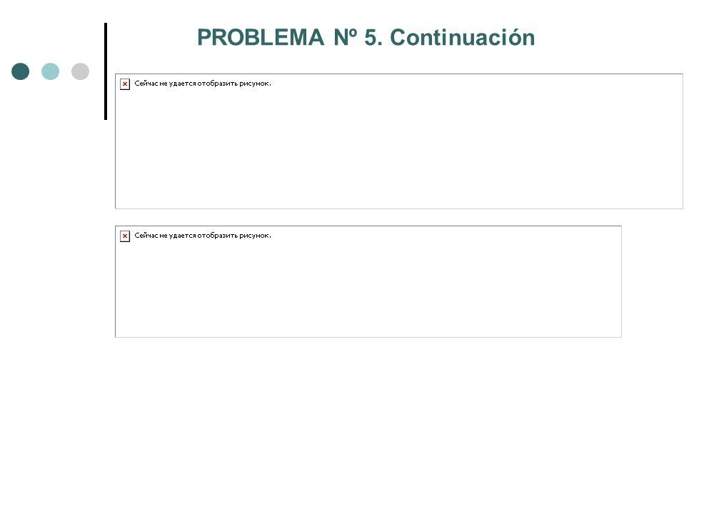 PROBLEMA Nº 5. Continuación