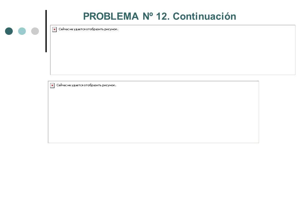 PROBLEMA Nº 12. Continuación