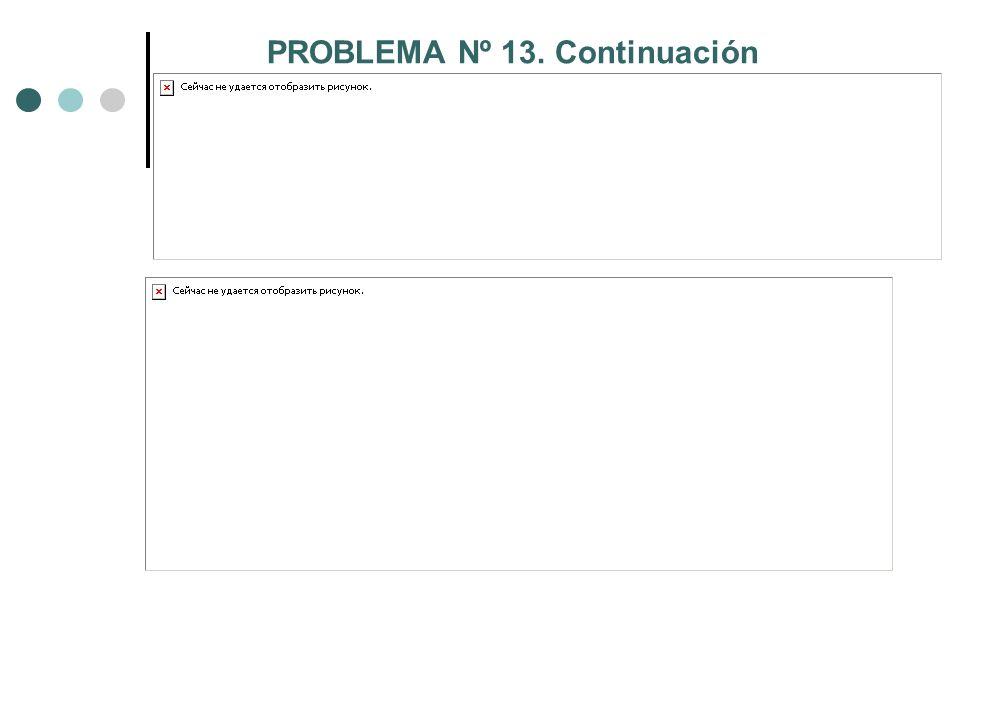 PROBLEMA Nº 13. Continuación