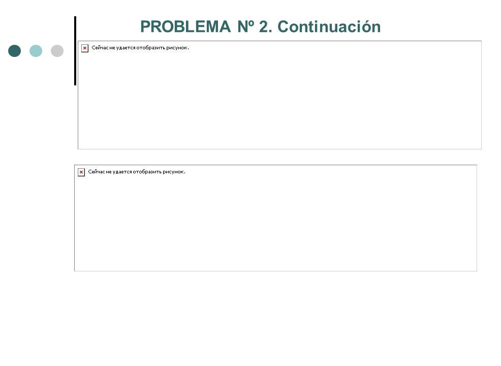 PROBLEMA Nº 2. Continuación