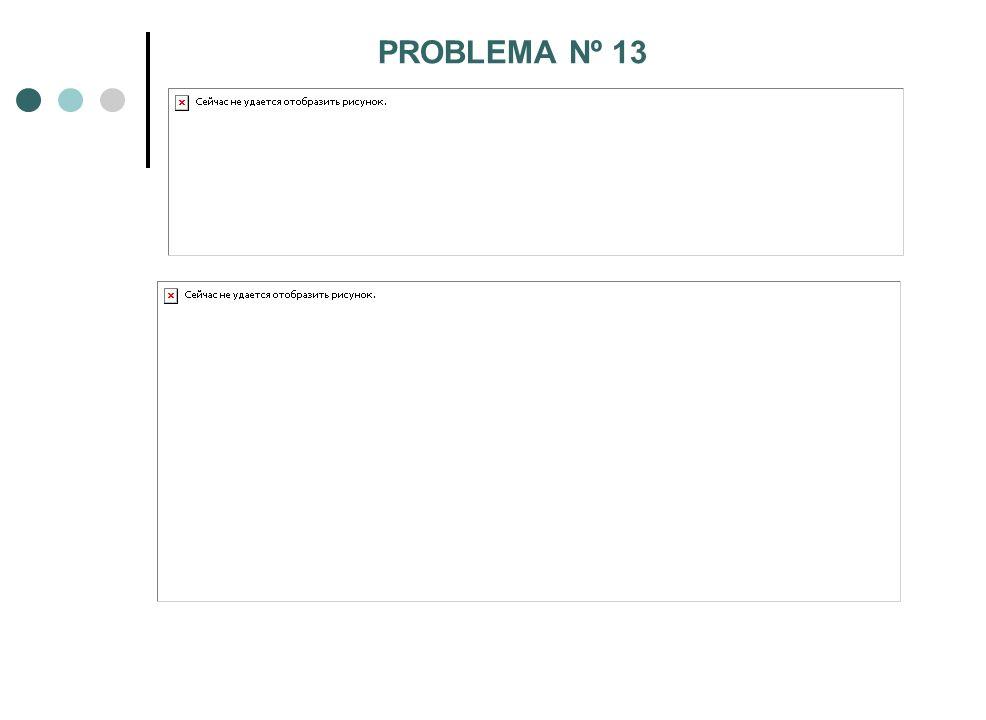 PROBLEMA Nº 13