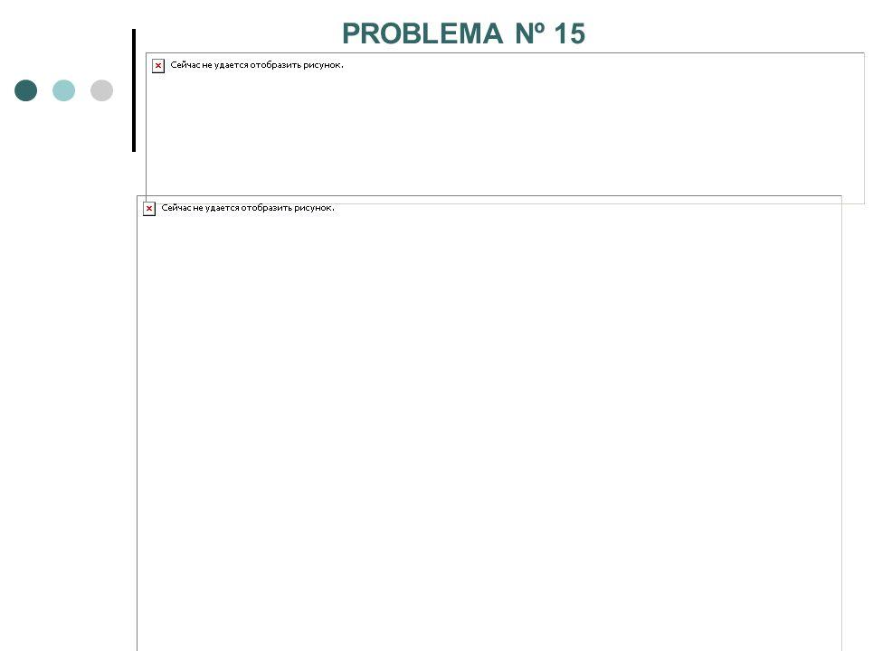 PROBLEMA Nº 15